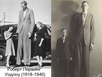 Какой самый высокий рост человека? - robert.jpg